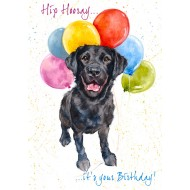 Hip Hooray.. it's your Birthday ! - CS061