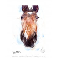 Equestrian: Open Edition Prints